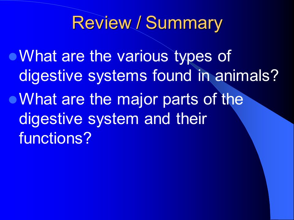 Review / Summary What are the various types of digestive systems found in animals