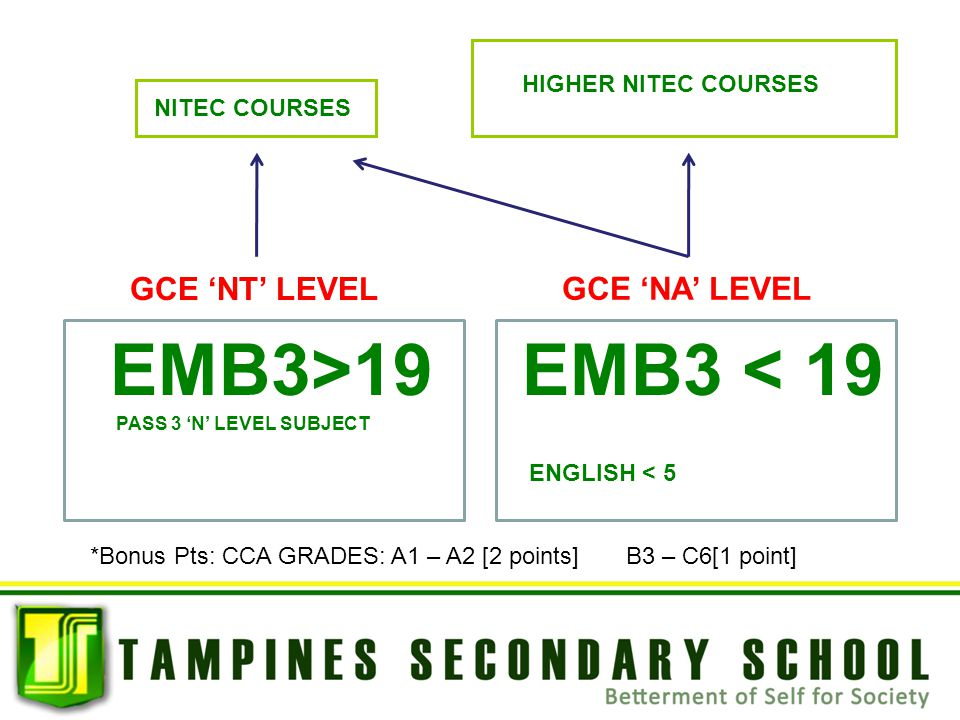 EMB3>19 EMB3 < 19 GCE 'NT' LEVEL GCE 'NA' LEVEL