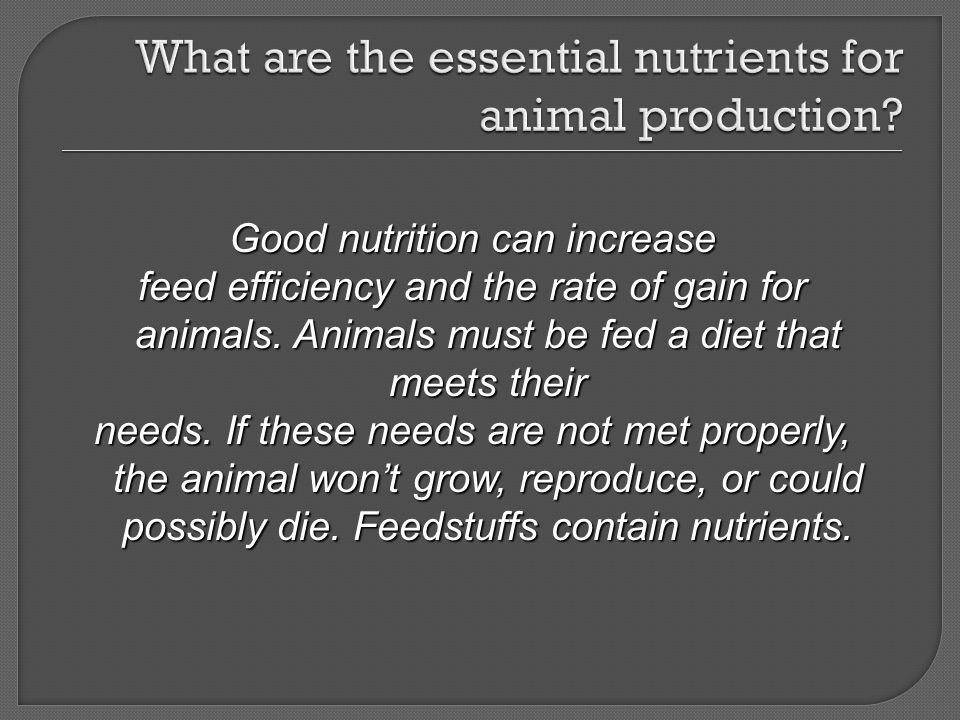 What are the essential nutrients for animal production