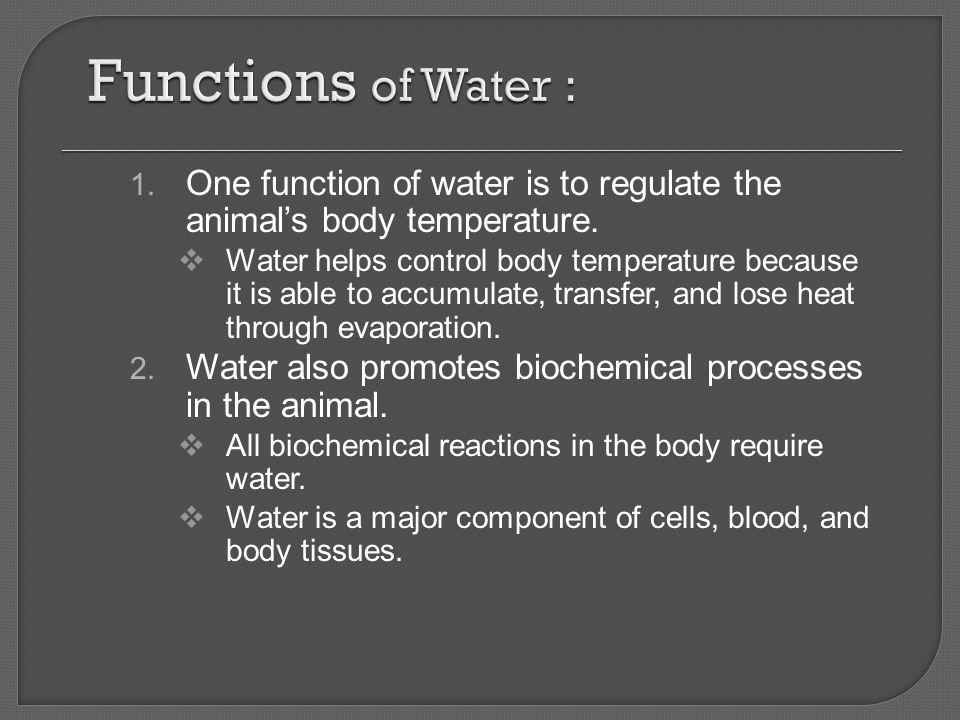 Functions of Water : One function of water is to regulate the animal's body temperature.