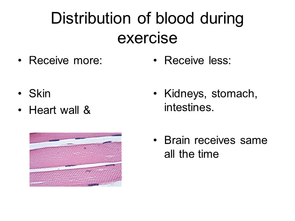 Distribution of blood during exercise