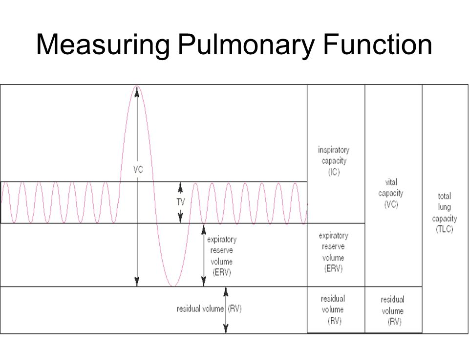 Measuring Pulmonary Function