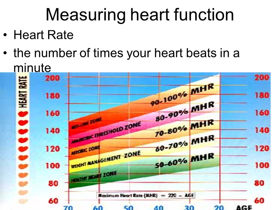 Measuring heart function