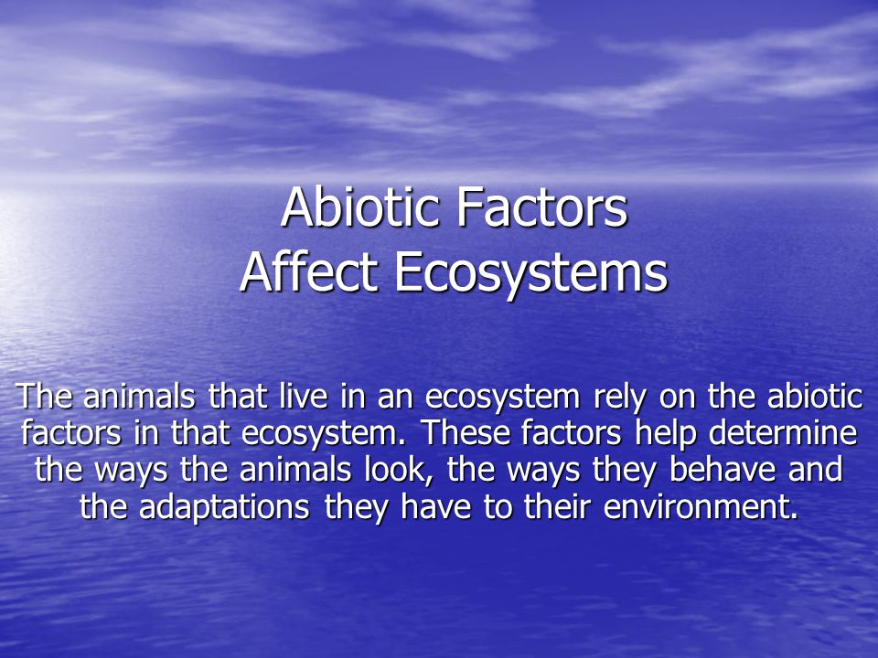Abiotic Factors Affect Ecosystems