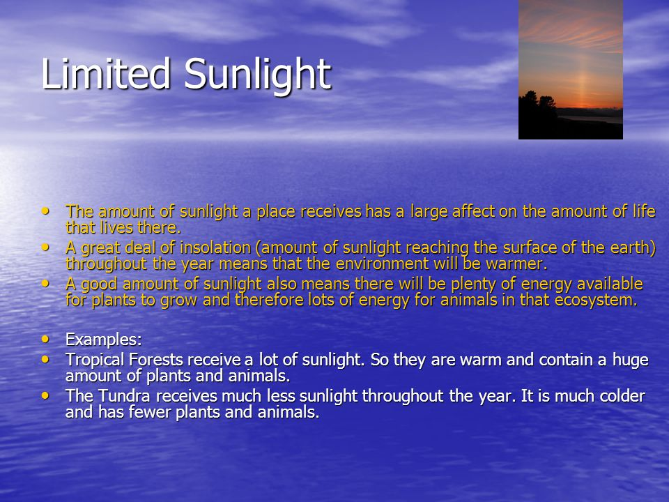 Limited Sunlight The amount of sunlight a place receives has a large affect on the amount of life that lives there.