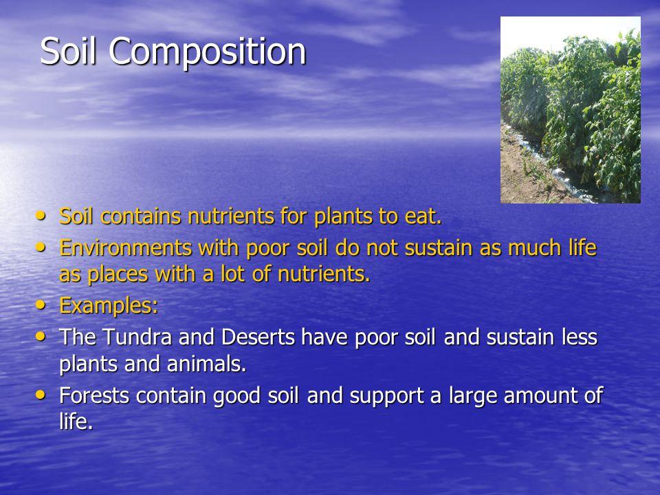 Soil Composition Soil contains nutrients for plants to eat.