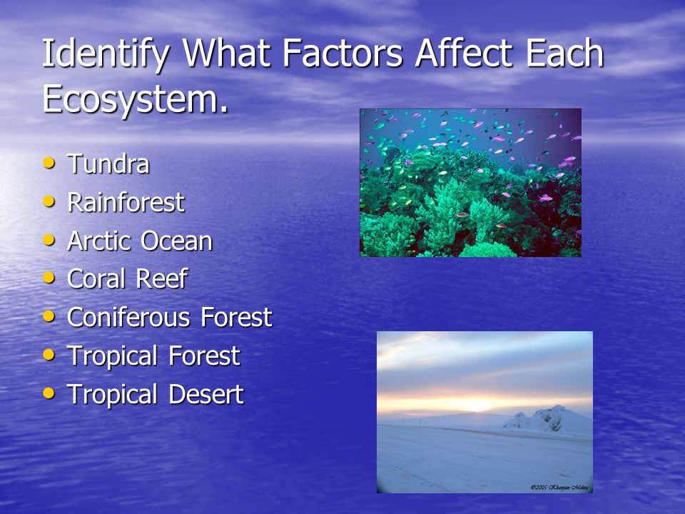 Identify What Factors Affect Each Ecosystem.