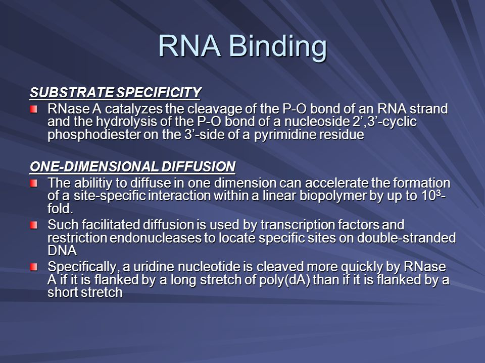 RNA Binding SUBSTRATE SPECIFICITY