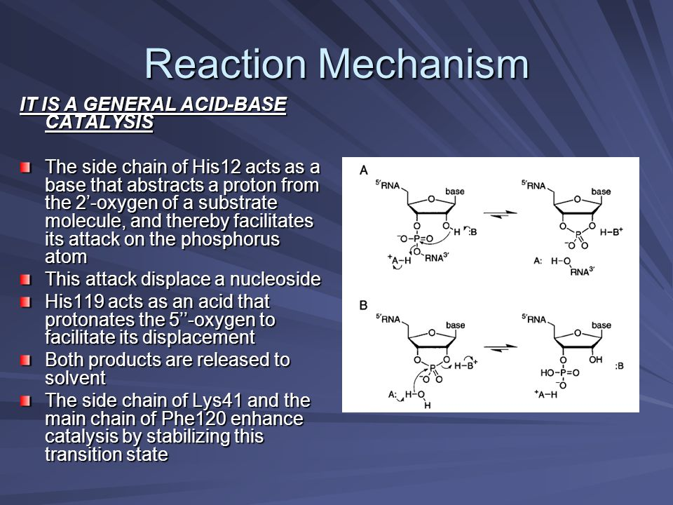 Reaction Mechanism IT IS A GENERAL ACID-BASE CATALYSIS