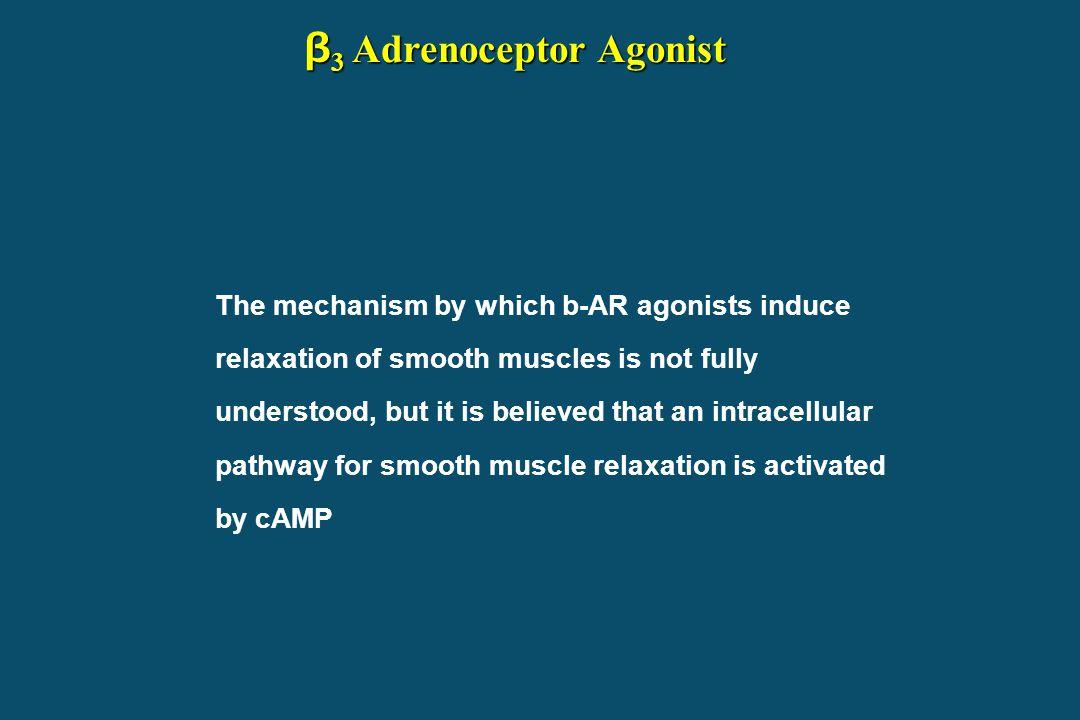 β3 Adrenoceptor Agonist