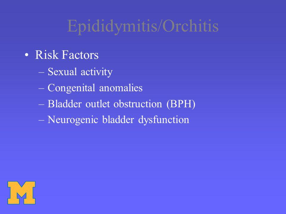 Epididymitis/Orchitis