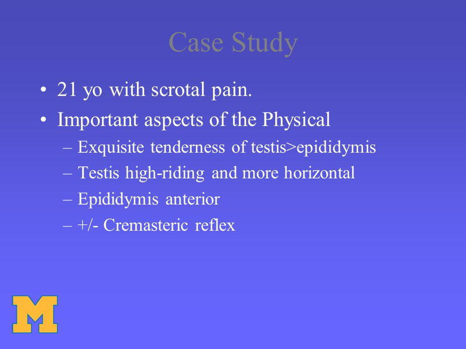 Case Study 21 yo with scrotal pain. Important aspects of the Physical