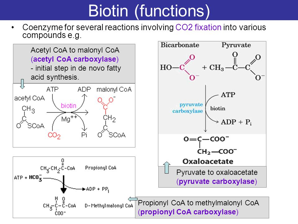 Biotin (functions) Coenzyme for several reactions involving CO2 fixation into various compounds e.g.