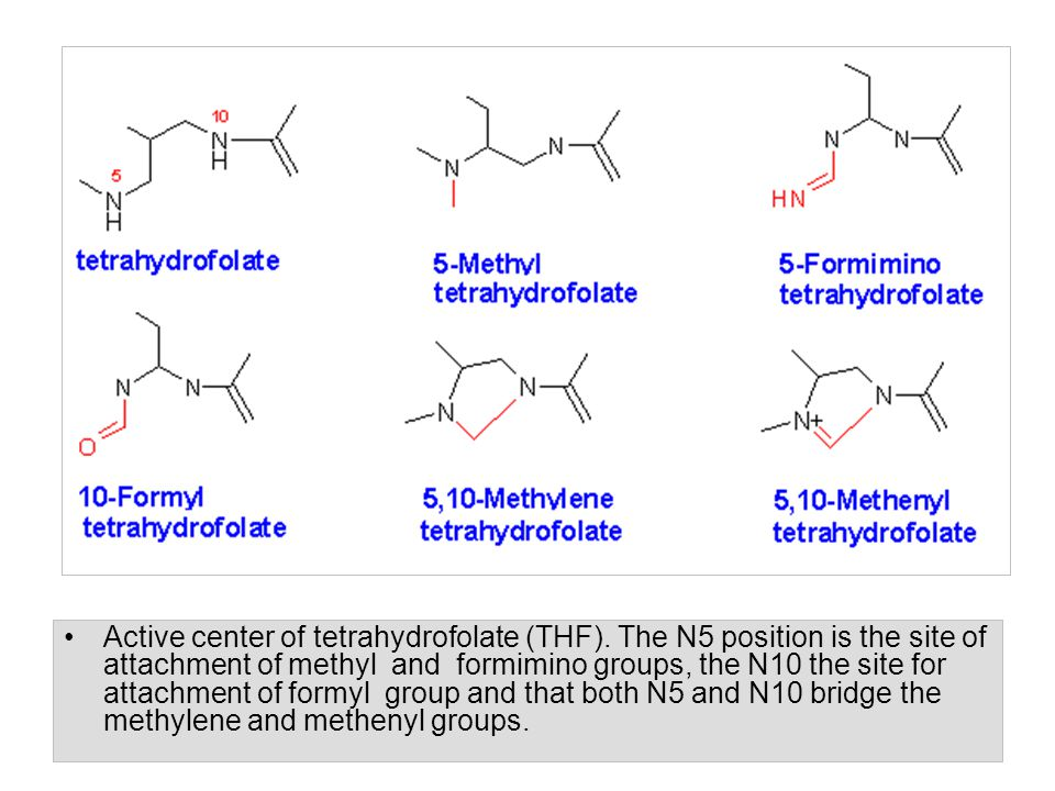 Active center of tetrahydrofolate (THF)