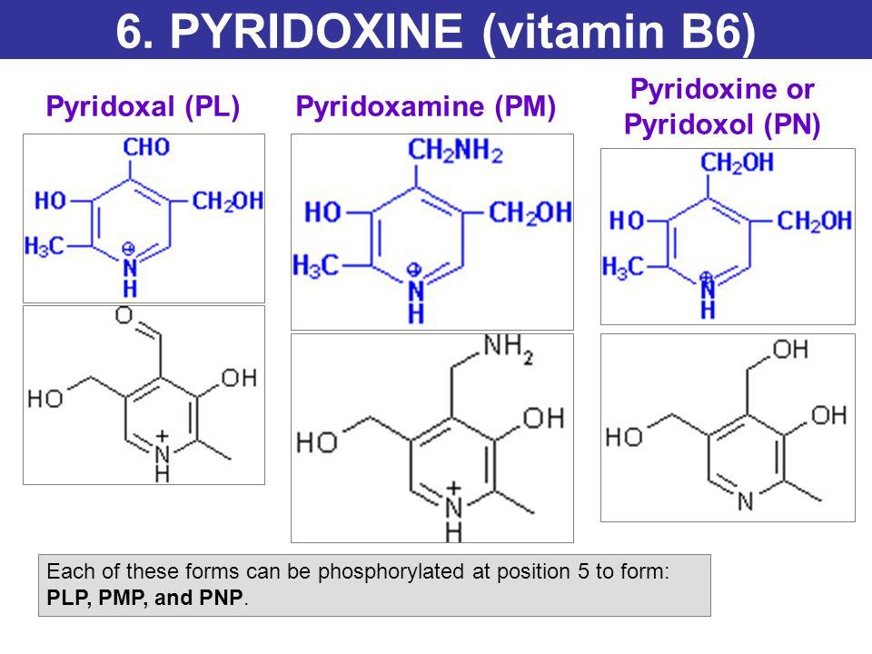 6. PYRIDOXINE (vitamin B6)