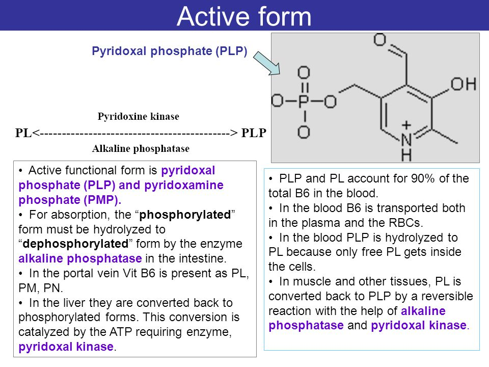 Active form Pyridoxal phosphate (PLP)