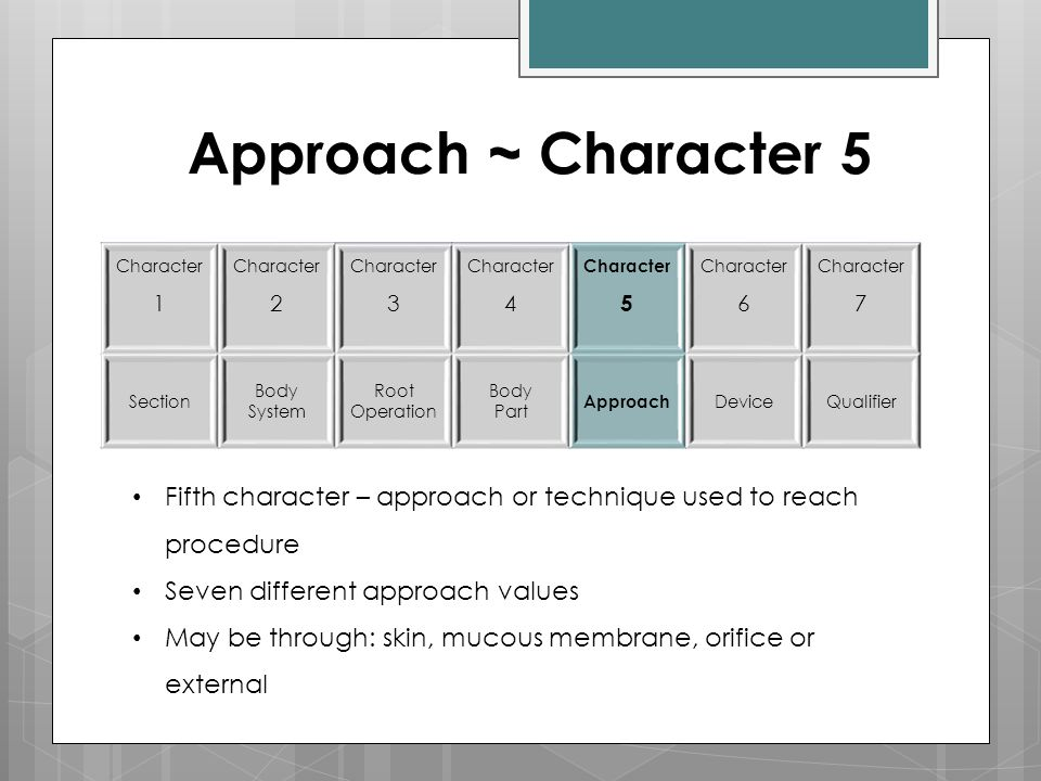 Approach ~ Character 5 Character 1. Character. 2. 3. 4. 5. 6. 7. Section. Body System. Root.