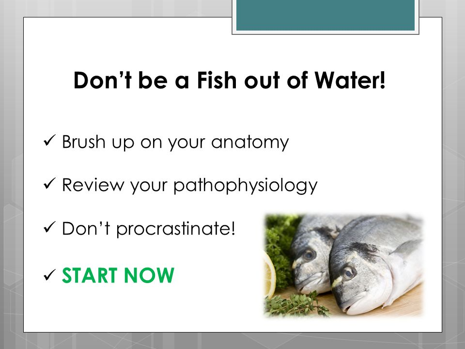 Don't be a Fish out of Water!
