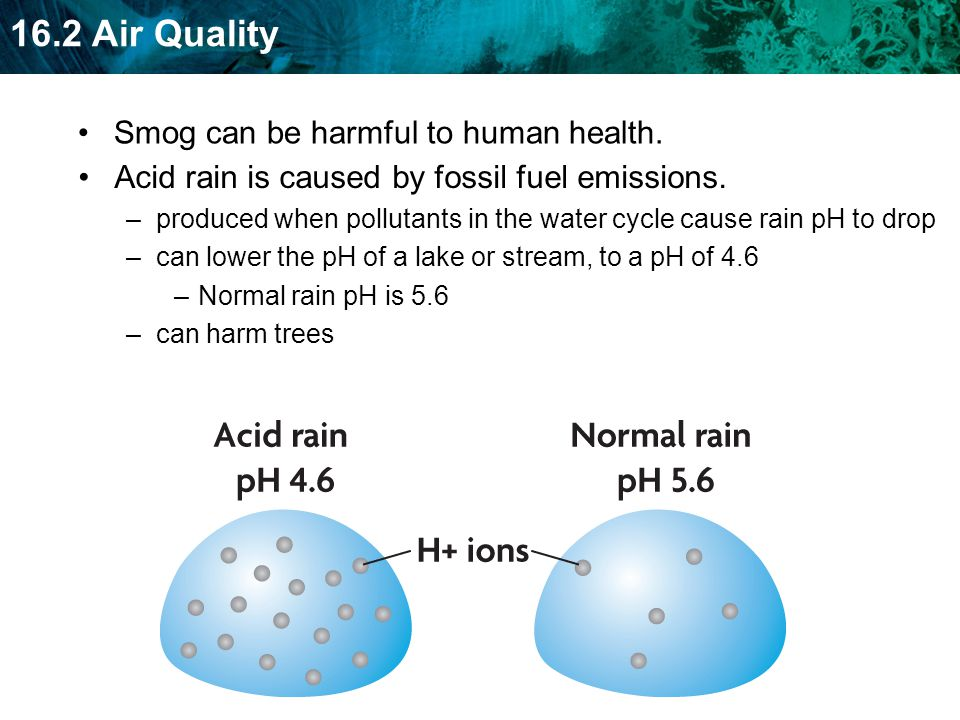 Smog can be harmful to human health.
