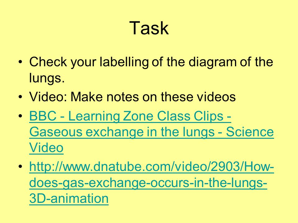 Task Check your labelling of the diagram of the lungs.