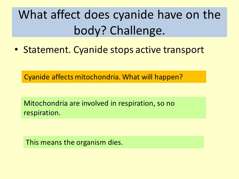 What affect does cyanide have on the body Challenge.