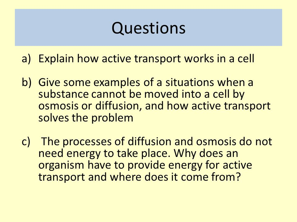 Questions Explain how active transport works in a cell