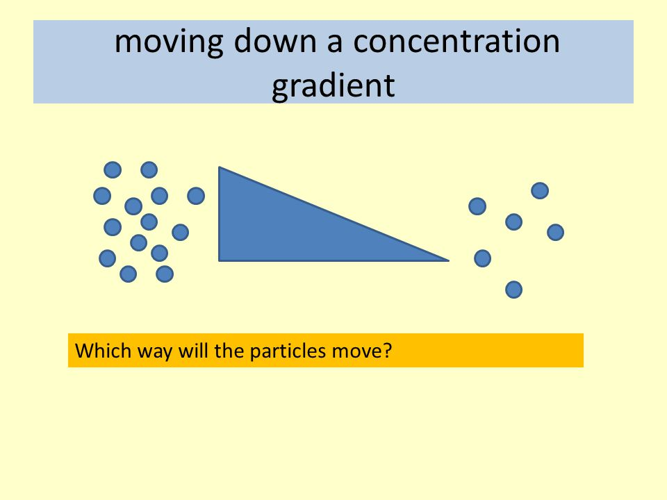 moving down a concentration gradient