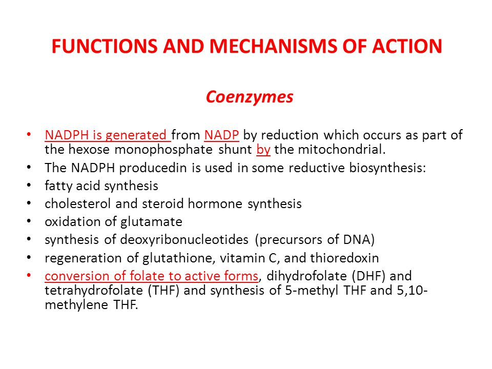FUNCTIONS AND MECHANISMS OF ACTION