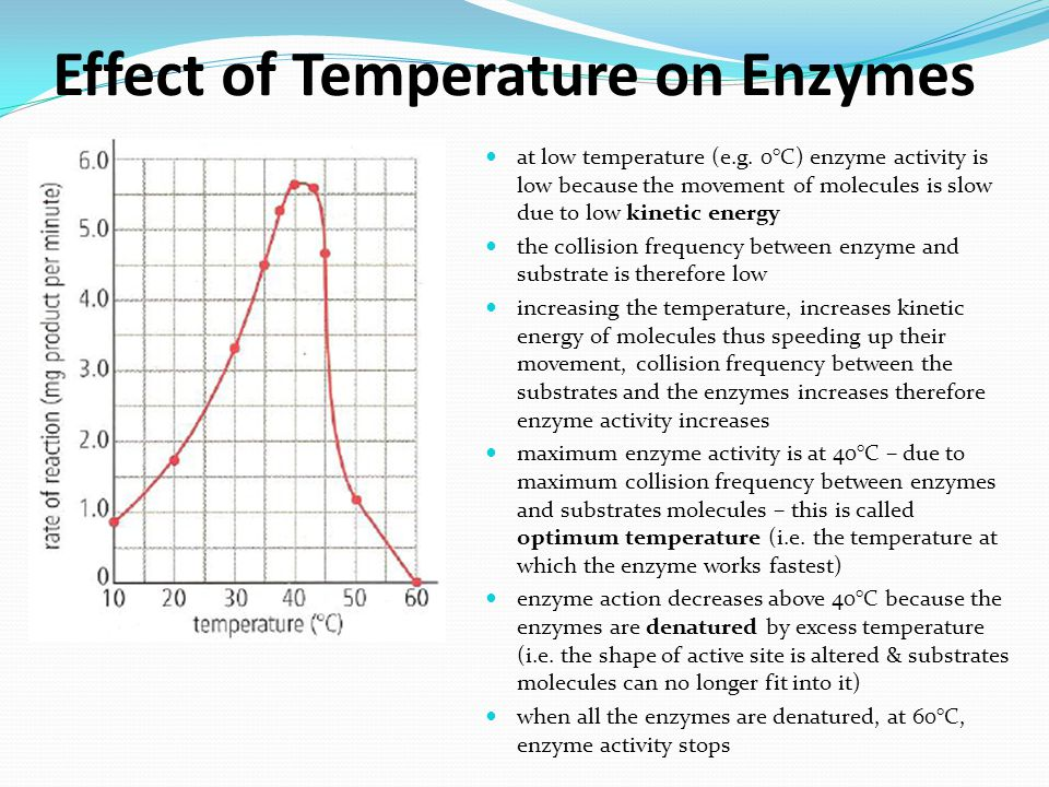 enzymes and temperature In addition to temperature and ph there are other factors, such as ionic strength, which can affect the enzymatic reaction each of these physical and chemical parameters must be considered and optimized in order for an enzymatic reaction to be accurate and reproducible.