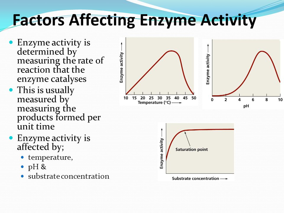 factors affecting the rate of enzyme activity The influence of ph on the activity of catalase enzyme introduction enzymes are vitally factors affecting the rate of enzyme activity enzyme activity.