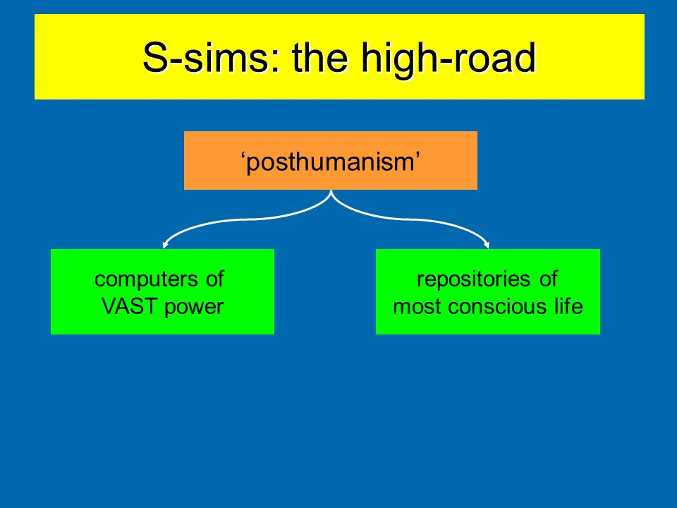 S-sims: the high-road 'posthumanism' computers of VAST power