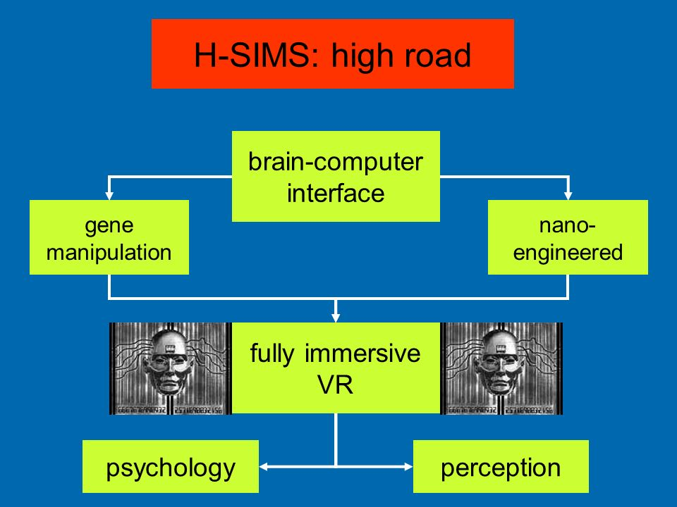 H-SIMS: high road brain-computer interface fully immersive VR