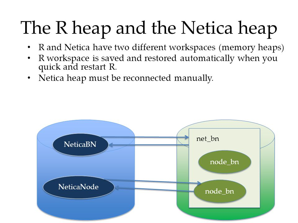 The R heap and the Netica heap