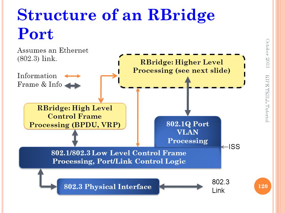 Structure of an RBridge Port