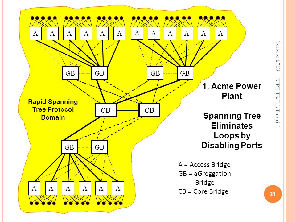1. Acme Power Plant Spanning Tree Eliminates Loops by Disabling Ports