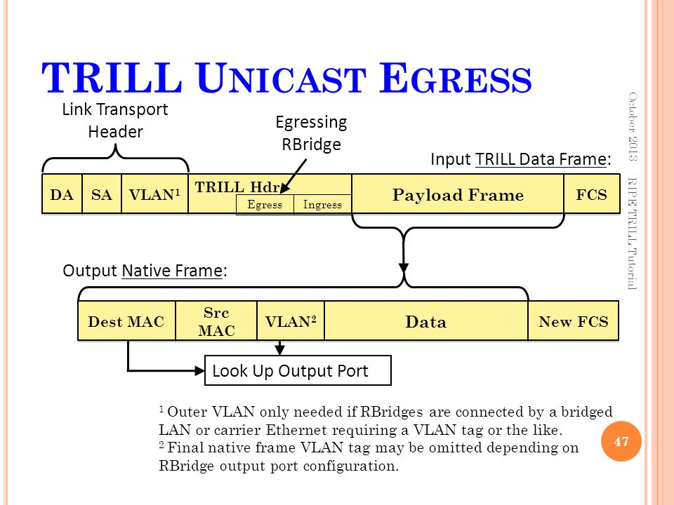 TRILL Unicast Egress Link Transport Header Egressing RBridge