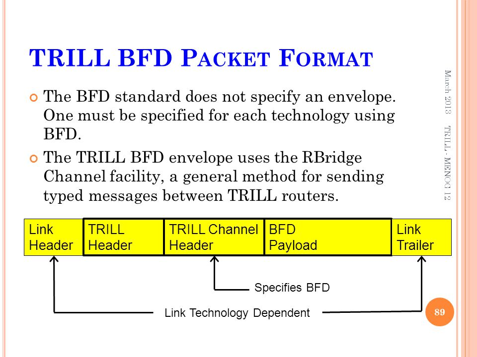 TRILL BFD Packet Format