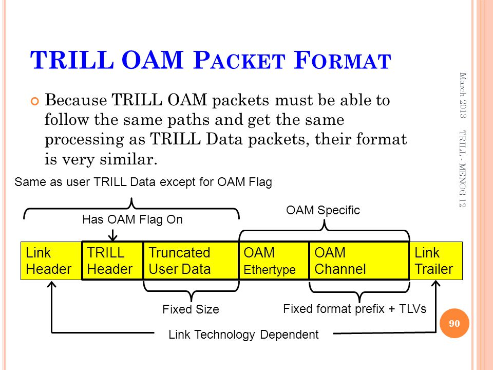 TRILL OAM Packet Format