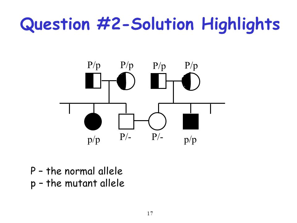 Question #2-Solution Highlights