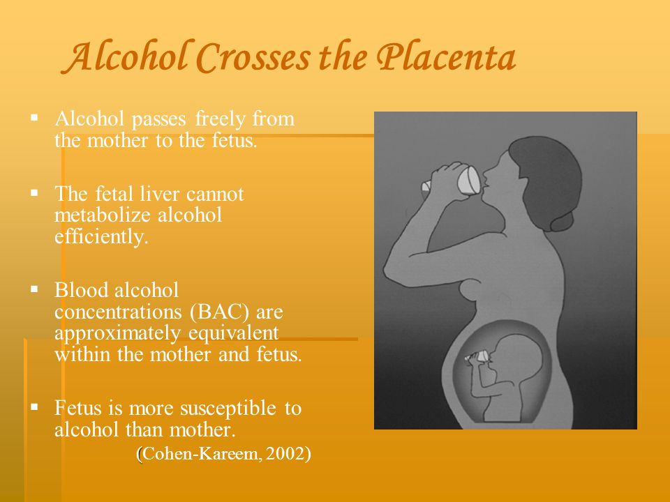 Alcohol Crosses the Placenta