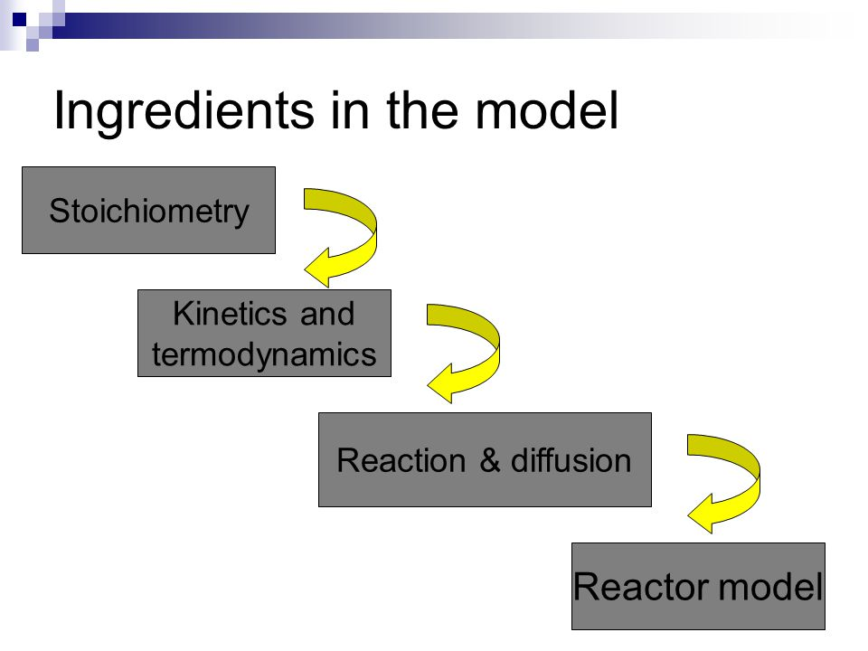 Ingredients in the model