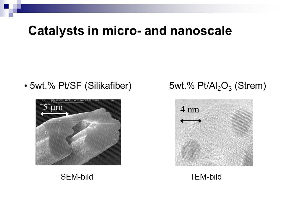 Catalysts in micro- and nanoscale