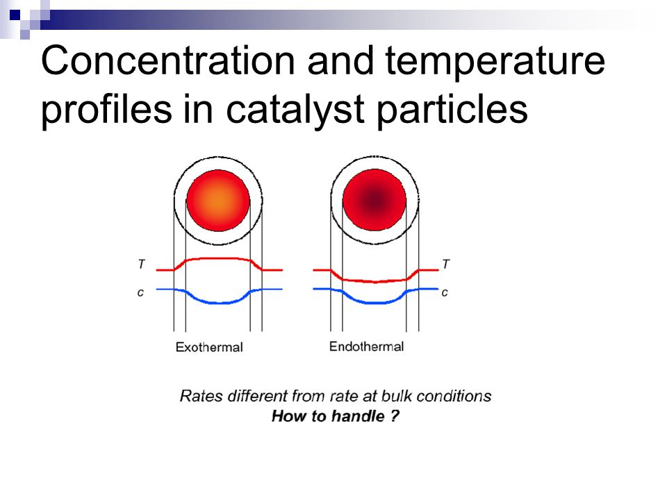 Concentration and temperature profiles in catalyst particles