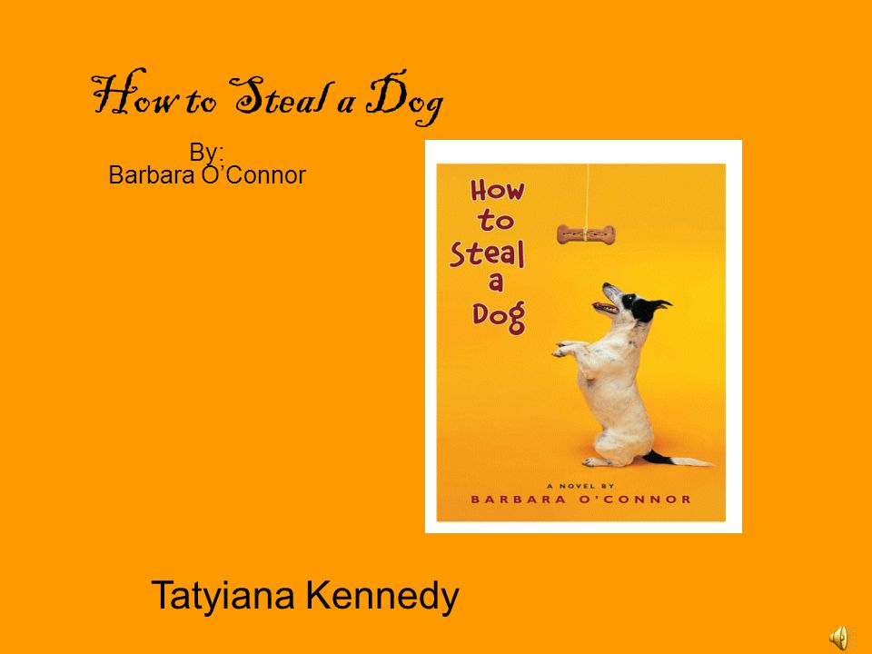 How to Steal a Dog By: Barbara O'Connor Tatyiana Kennedy