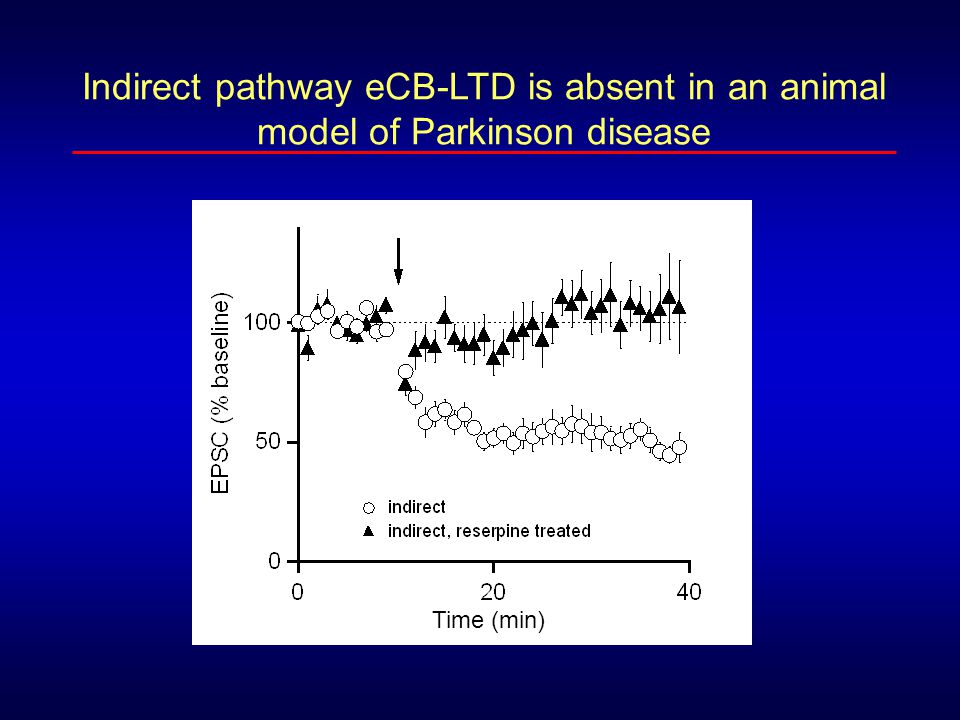 Indirect pathway eCB-LTD is absent in an animal model of Parkinson disease
