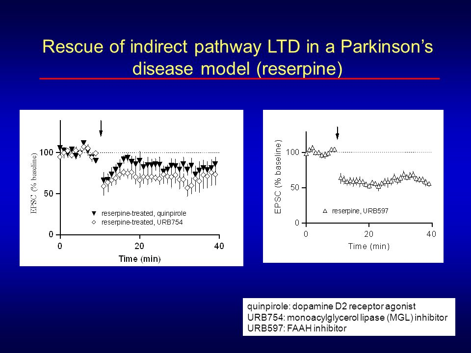 Rescue of indirect pathway LTD in a Parkinson's disease model (reserpine)