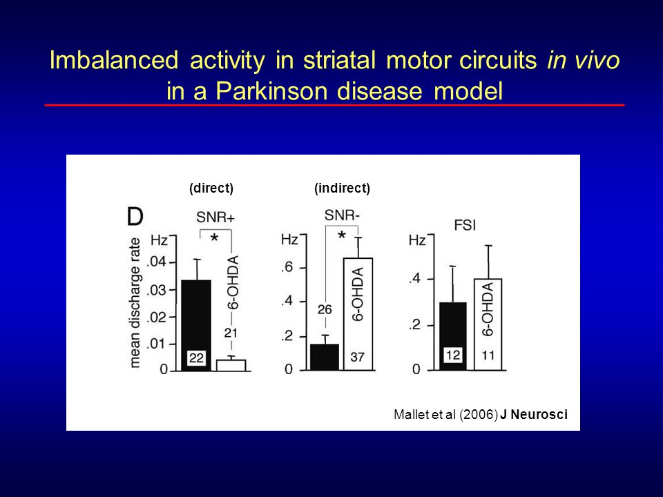 Imbalanced activity in striatal motor circuits in vivo in a Parkinson disease model