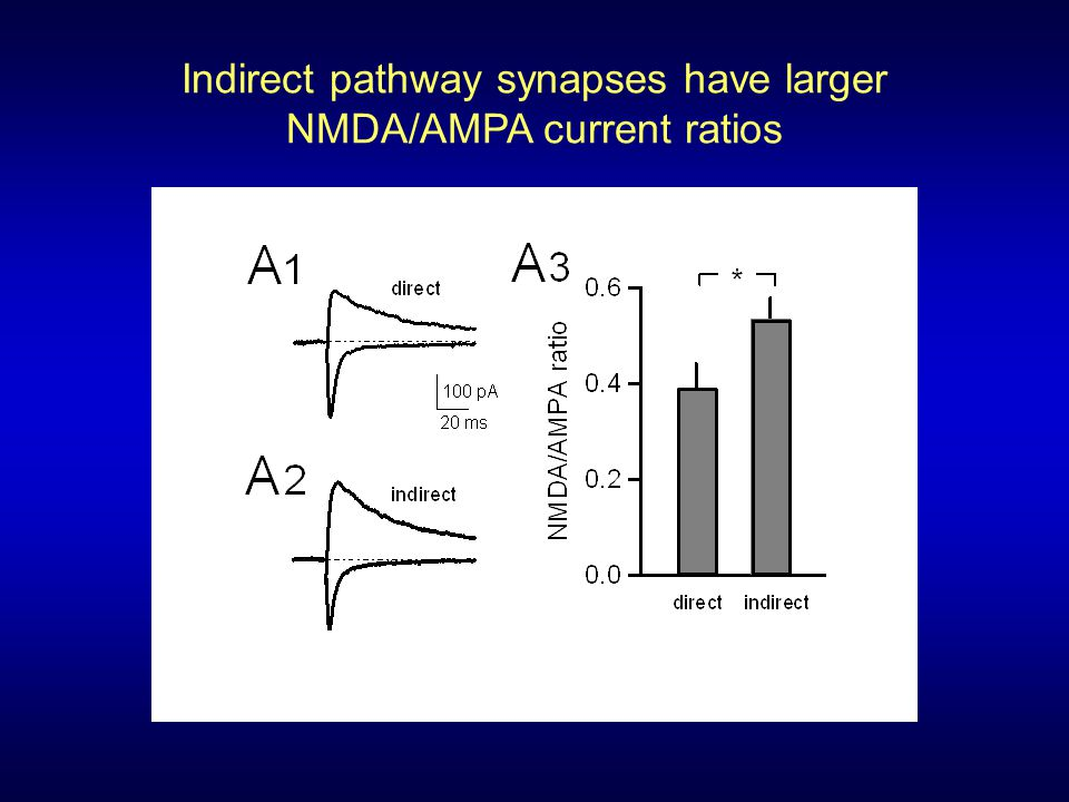 Indirect pathway synapses have larger NMDA/AMPA current ratios