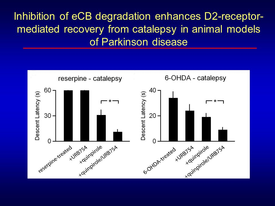 Inhibition of eCB degradation enhances D2-receptor-mediated recovery from catalepsy in animal models of Parkinson disease
