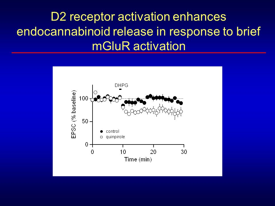 D2 receptor activation enhances endocannabinoid release in response to brief mGluR activation